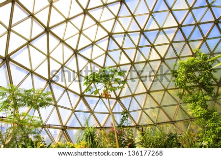 Lots of plants and trees inside a glass dome