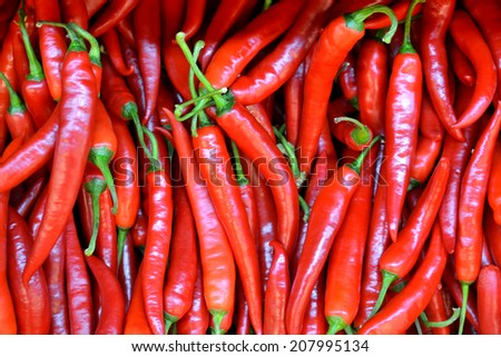 Lots of red chili peppers - stock photo