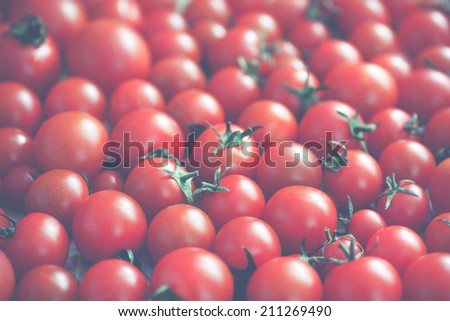 lots of ripe tomatoes in vintage colors - stock photo