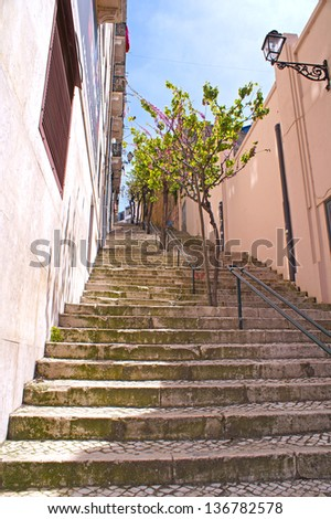Lots of stairs with trees in Lisbon on a sunny day - stock photo