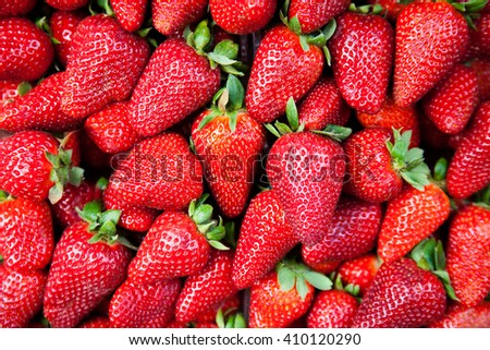 Lots of strawberies as background or wallpaper - stock photo
