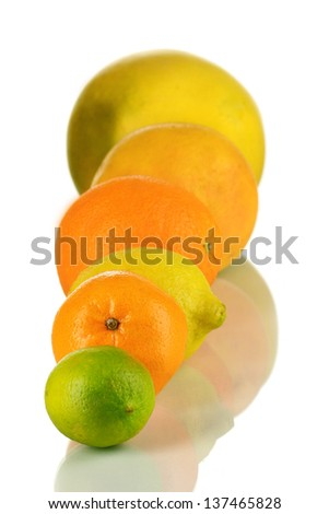 Lots ripe citrus isolated on white