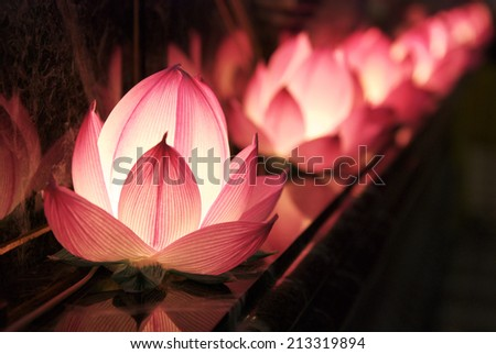 Lotus decoration - stock photo