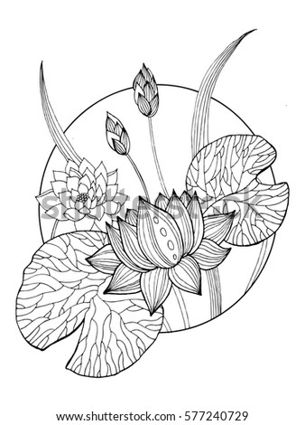 Lotus flower coloring book raster illustration stock illustration lotus flower coloring book raster illustration tattoo stencil black and white lines lace mightylinksfo