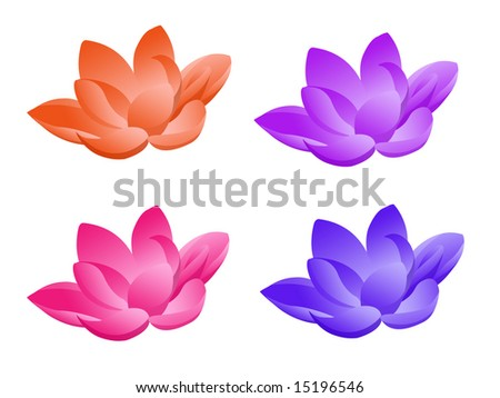 Lotus flower in four colors on white background - stock photo