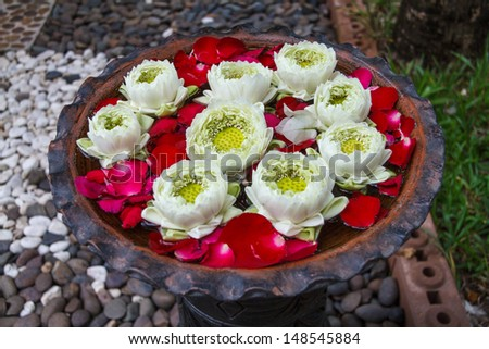 Lotus Flowers Floating On The Pond - stock photo
