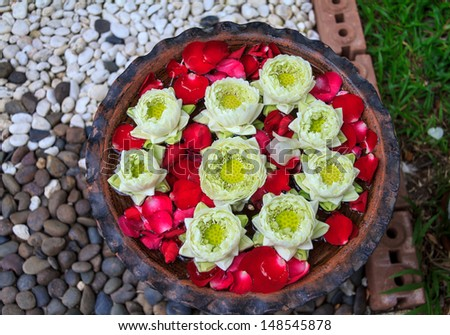 Lotus Flowers Floating On The Pond With Stone Background - stock photo