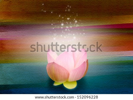 Lotus Light - stock photo