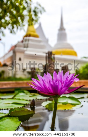 Lotus with Buddha Image background in Buddhist pagoda, Thailand - stock photo