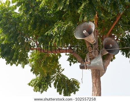 Loudspeaker creative on tree - stock photo