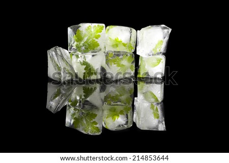 Lovage, basil and parsley frozen in ice cubes. Aromatic cooking herbs in ice cubes isolated on black background. Culinary fresh cooking.  - stock photo