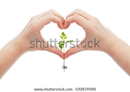 Love and protect nature and life concept with woman hand holding young seedling