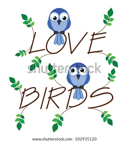 Love bird twig text with two lovesick birds