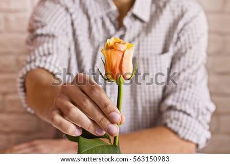 Love concept. Man holding orange rose in hand. Valentine's postcard. Women's day. St. Valentine's day.