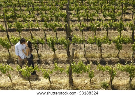 love in a vineyard - stock photo