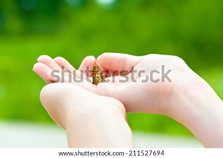 Love the nature. Girl hands holding a small butterfly. Outdoors. - stock photo