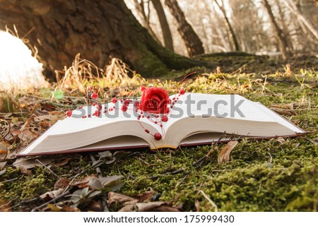 love theme - open book with rose on the moss in the forest at sunset - stock photo