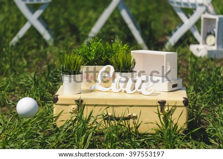 love word on suitcase on green grass