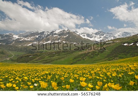 lovely alpine landscape - stock photo