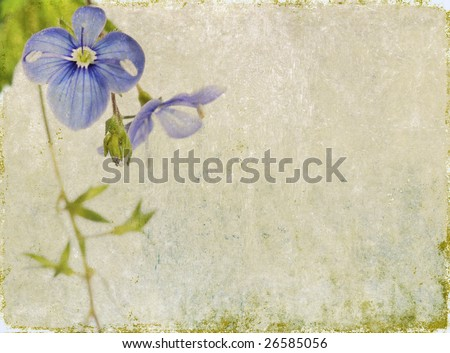 lovely background image with floral elements. very useful design element