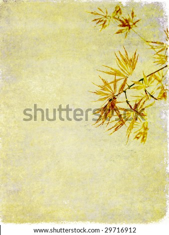 lovely background image with floral elements. very useful design element.