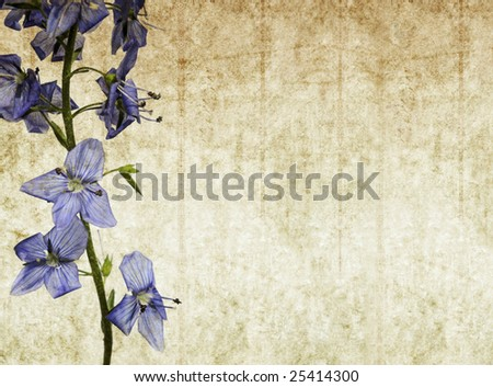 lovely background texture with floral elements. very useful design element.