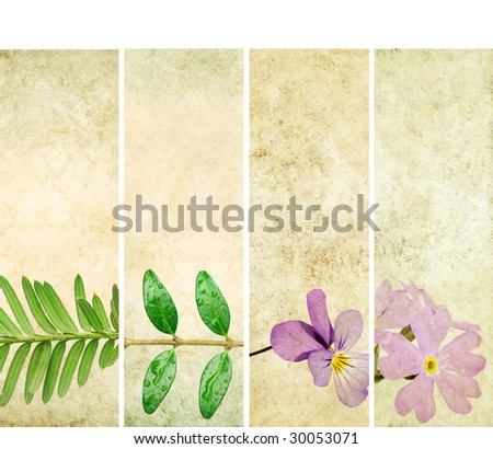 lovely banners with floral elements and earthy texture. very useful design elements.