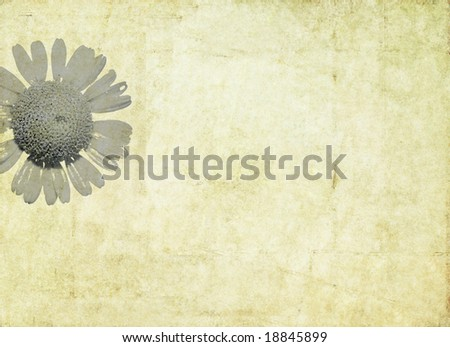 lovely brown background image with interesting texture and floral elements