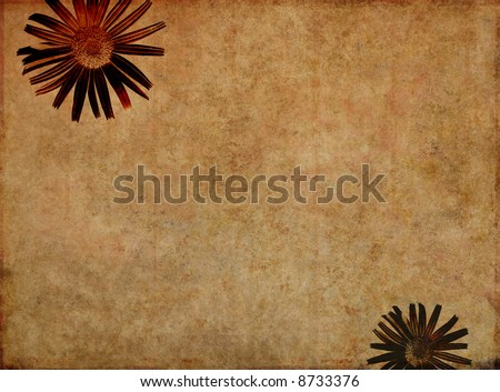 lovely brown background image with interesting texture and floral elements and plenty of space for text
