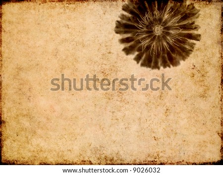 lovely brown background image with interesting texture and floral elements with plenty of space for text