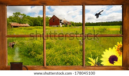 Lovely country landscape seen through an old farmhouse window, with a cute puppy looking at a raven flying by. - stock photo