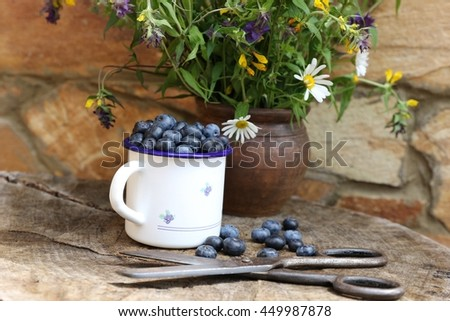 Lovely garden scene with fresh blueberries in the white enamel cup, mug on wooden stump, very old rustic scissors, wildflowers in brown ceramic clay pot, jag on sand wall background. Real day light  - stock photo