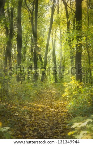 Lovely gentle, autumn - stock photo
