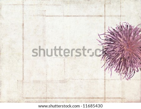 lovely geometric background image with interesting texture, floral elements and plenty of space for text