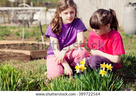 Lovely Girl working in the garden,daffodils in the foreground - stock photo