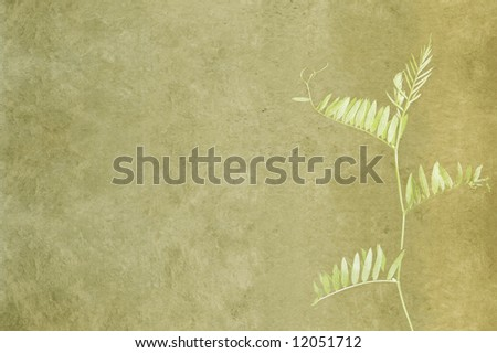 lovely green background image with interesting texture, floral elements and plenty of space for text - stock photo