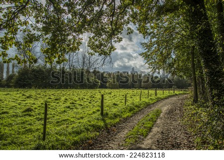 Lovely road  - stock photo
