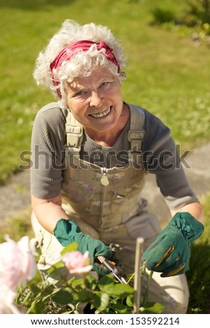 Lovely senior woman taking care for plants in her backyard garden - Outdoors - stock photo