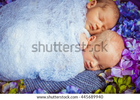 Lovely sleep of the newborns on the bed with flowers - stock photo