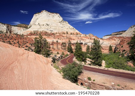Lovely texture on the rocks at Zion national Park, USA - stock photo
