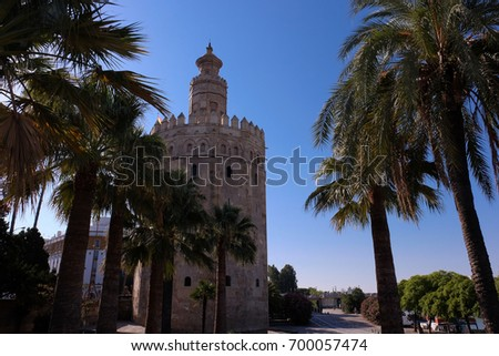 Lovely view from the Torre del Oro in Seville with palm trees in the foreground and blue sky in the background