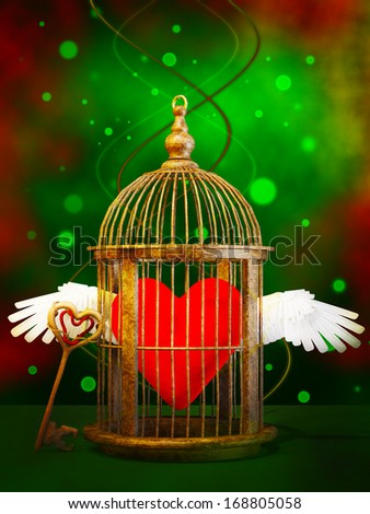 Loving heart  in cage - stock photo