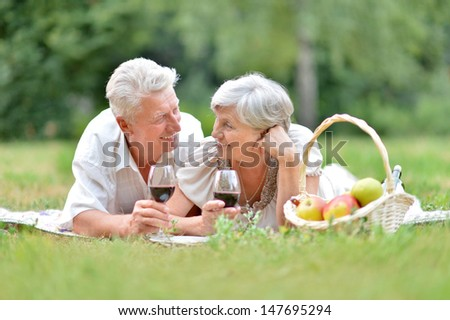 loving mature couple having a picnic in the summer - stock photo