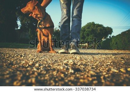 low angle image of person with his dog. selected focus - stock photo
