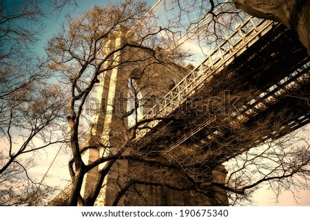 Low angle of the Brooklyn Bridge as seen through the towering branches of surrounding trees, New York City, New York, USA - stock photo