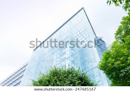 Low angle view past green foliage of the transparent glass facade of a contemporary urban skyscraper in an architectural background