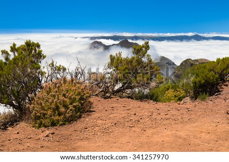 Low bushes and poor vegetation among the reddish soil of the mountains of Madeira and stones highly in mountains. The visa - the dense bed of clouds, and is higher the bright blue sky - stock photo