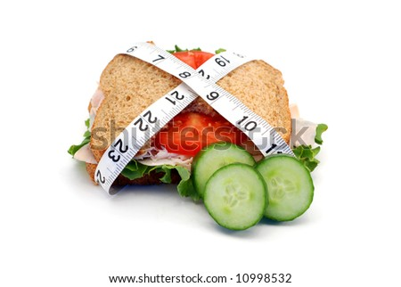 Low-carb diet concept with a whole wheat turkey sandwich isolated on white