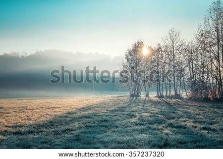 Low fog morning winter time in Northern Italy - stock photo