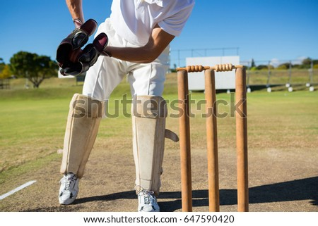 Low Section Wicket Keeper Standing By Stock Photo Royalty Free